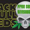 Blackskull giveaway