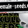 Free Pepperjack haze seeds