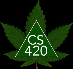 cs420